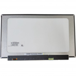Laptop scherm NV161FHM-N61...